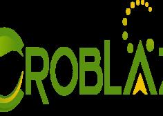 https://jobifynn.com/storage/2021/07/Croblaze-logo-236x168.png
