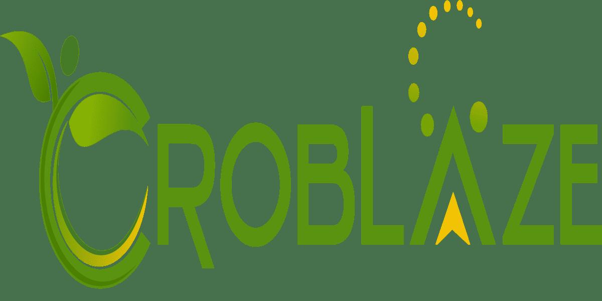 Croblaze logo
