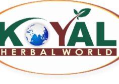 https://jobifynn.com/storage/2021/09/1606109720853_Koyal-logo-png-1_11zon-236x168.jpg